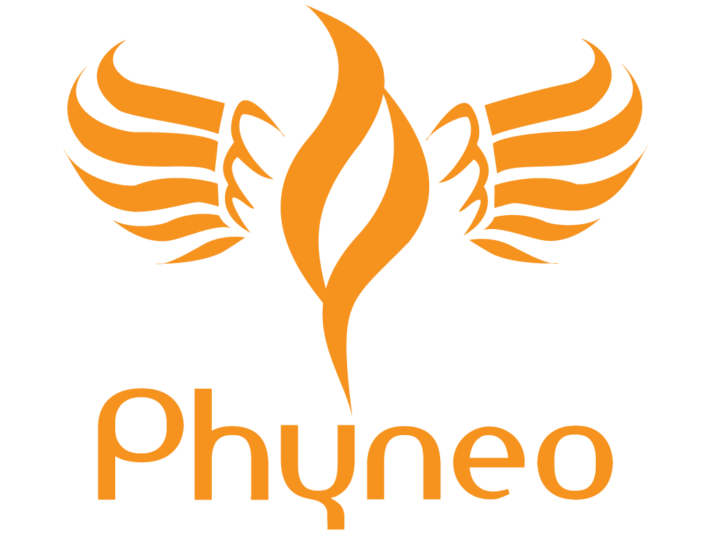 Phyneo | Website Design | Animation Video